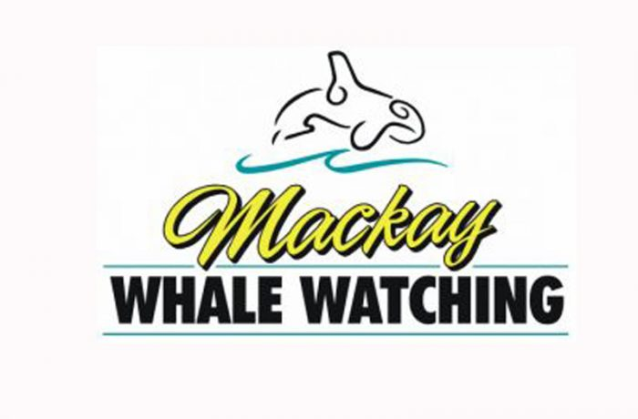 Mackay Whale Watching